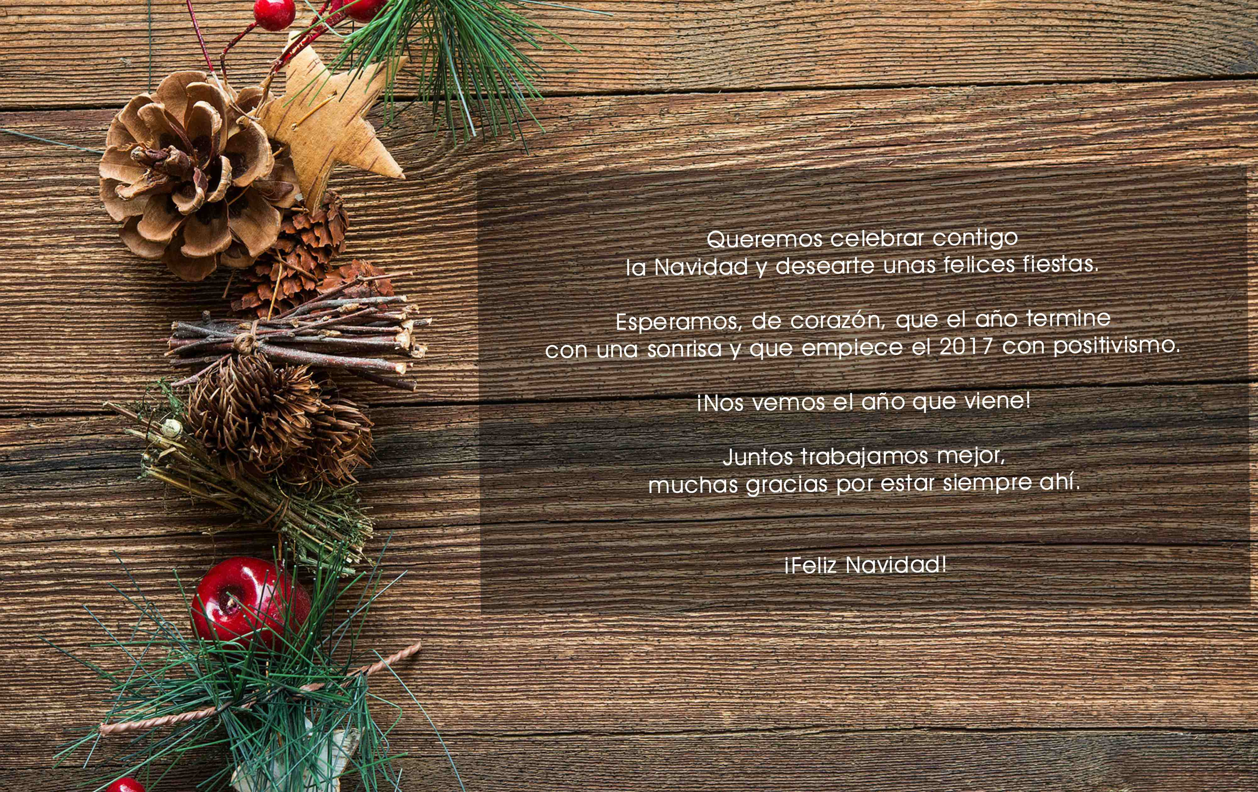 quide_navidad