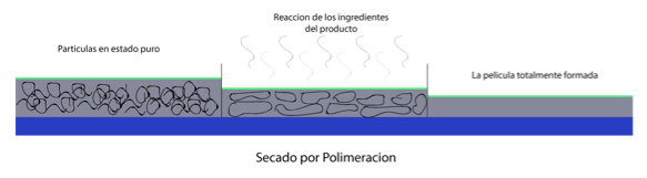 proceso de secado por polimeración