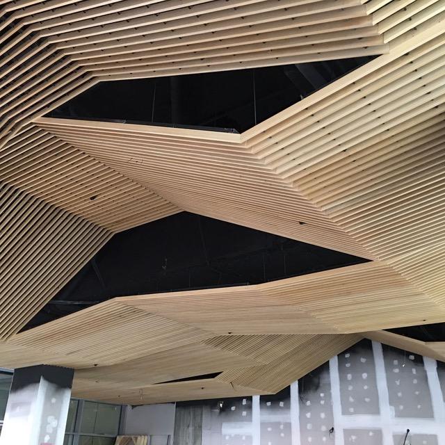 techo de ayous